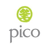 Pico Brochure icon