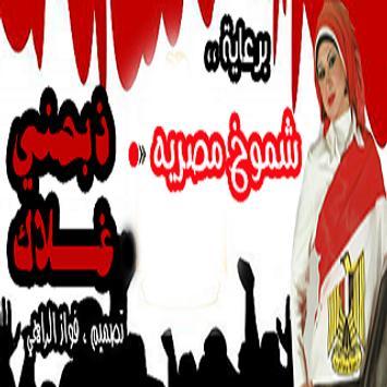 شات انا مصري poster
