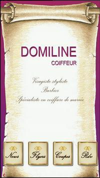 Domiline Coiffure poster