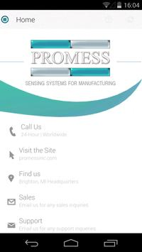 Promess Inc poster