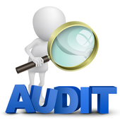 STAR Audit Application icon