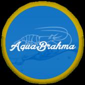 AquaBrahma icon