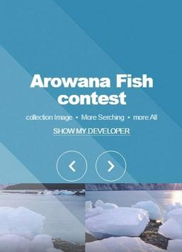 Arowana Fish Contest apk screenshot