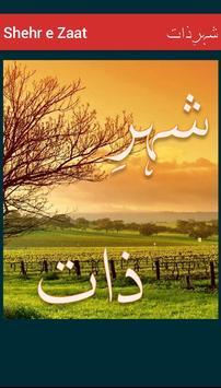 Shehr e Zaat poster