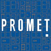 Promet - Euro icon