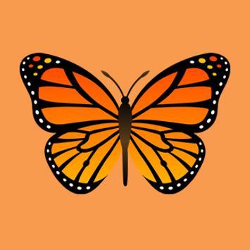ButterflyCall apk screenshot