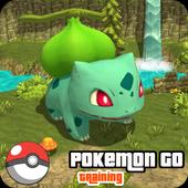 Training For Pokemon Go 2016 icon