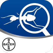 Bayer Maxforce Ant Solutions icon