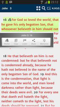 Virtue Bible FE apk screenshot