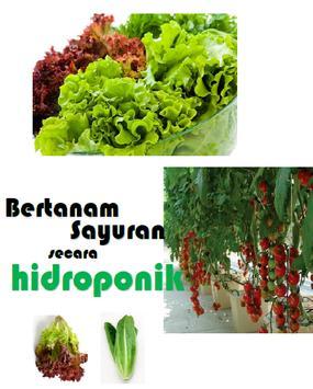 Ebook Hidroponik poster