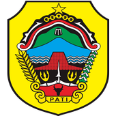Pendaftaran Online Soewondo icon