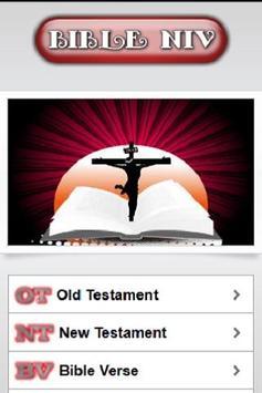 Bible NIV (FREE) poster