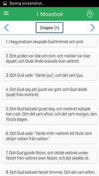 Swedish Bible apk screenshot