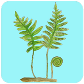 ArtsApp Karsporeplanter icon