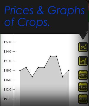 DYFEX- Produce, Grains, Farm. poster