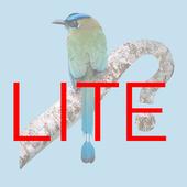 Panama Birds Lite Field Guide icon