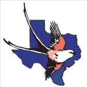 BirdsEye Texas OS icon