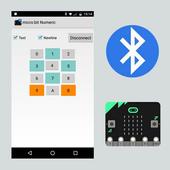 micro:bit Numeric icon