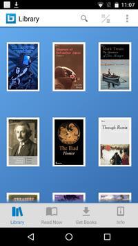 Bluefire Reader poster