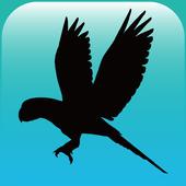 블루래빗새 - AR icon