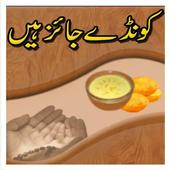 Book 034 Faiz Ahmed Uwaysi icon