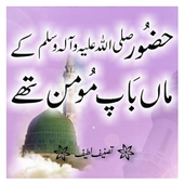 Book 012 Faiz Ahmed Uwaysi icon