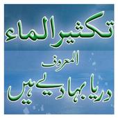 Book 029 Faiz Ahmed Uwaysi icon