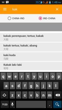 Kamus Indonesia China/Mandarin apk screenshot