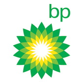 BP Review of World Energy icon