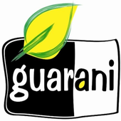Guarani Smart for Android icon