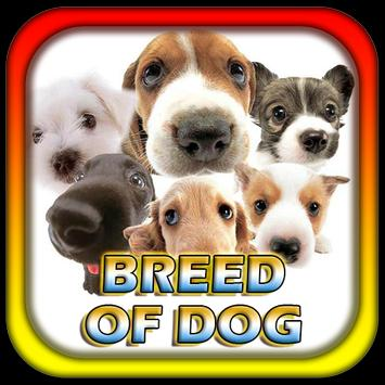 Breed Of Dog poster