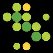 Customia icon