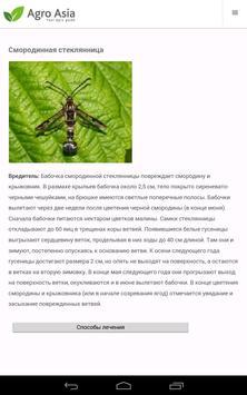Справочник по смородине apk screenshot