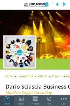 D.Sciascia Business Consulting poster