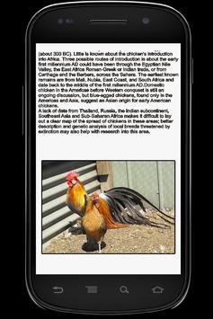 Chicken Info Book apk screenshot