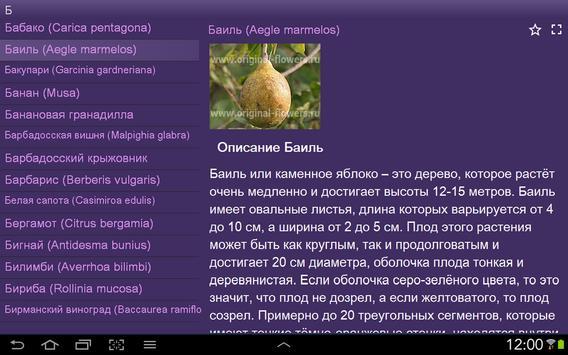 Каталог фруктов и ягод apk screenshot