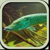 Рыбы России беспл. icon