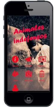 Animales Indefensos poster