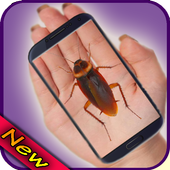Cockroach on Hand Prank icon