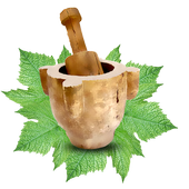 Lebanese Traditional Recipes icon