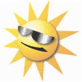 Window Tinting Florida icon