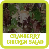Cranberry Chicken Salad Recipe icon