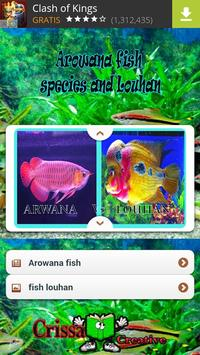 Arowana fish Species And Lohan poster