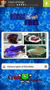 Various Types Of Fish Betta apk screenshot