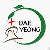 대영교회 icon