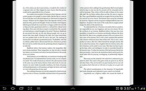 English Dhammapada Chapter 22 apk screenshot