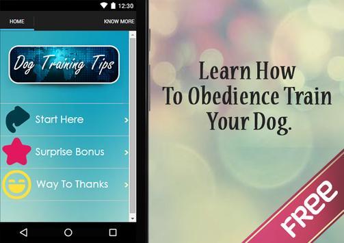 Dog Training Tips poster
