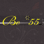 BE*55 icon