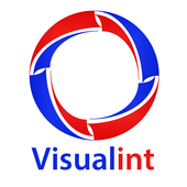 Visualint Line icon