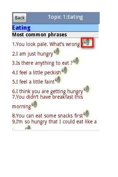 English Italian Dictionary Pro apk screenshot